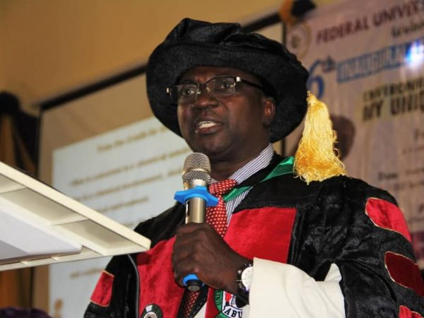 MAJOR VEGETABLES IN MINNA MARKET ARE FREE FROM HEAVY METAL, BUT… -PROF JACOB
